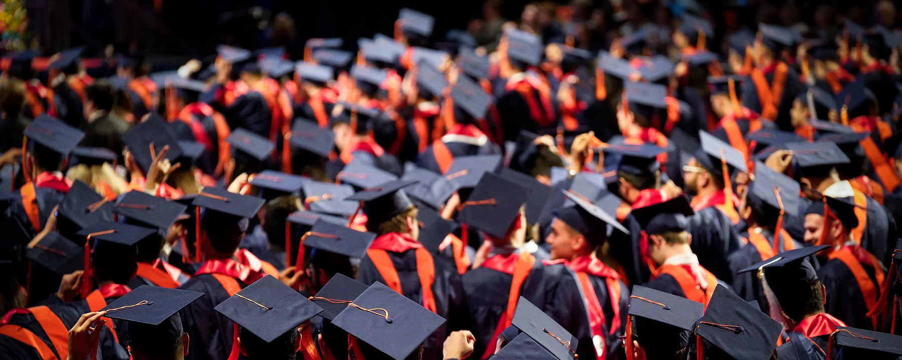 Pack of UIC graduates in caps and gowns